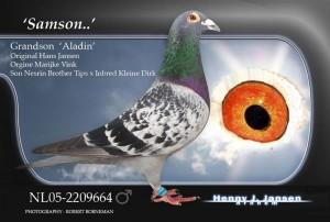 Kopie-van-NL05-2209664